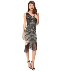 Unique Vintage Beaded Deco Vienna Mesh Flapper Dress Ivory Black Women's Dress Multi