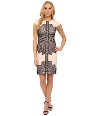 Adrianna Papell Cap Sleeve Dress With Contrast Lace Overlay Blush Black Women's Dress Pink