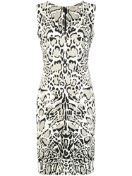 Roberto Cavalli Leopard Print Dress Nude And Neutrals