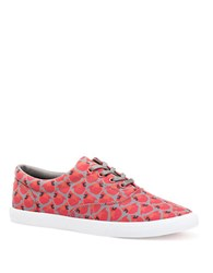 Bucketfeet Cardinals Lace Up Sneakers Red