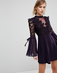 True Decadence Premium Lace Mini Dress With Bow Sleeve Detail Plum Purple