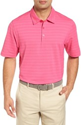 Cutter And Buck Men's Shoregrass Drytec Moisture Wicking Polo Surge