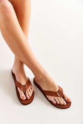 Rainbow Classic Leather Flip Flop Brown