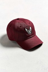 Urban Outfitters Uo Weird Cat Baseball Hat Maroon