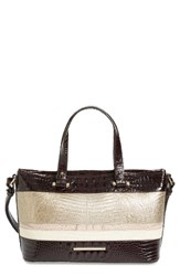 Brahmin Kapoor Mini Asher Leather Tote