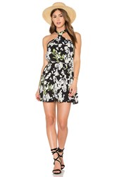 Lucca Couture Sophie Dress Black
