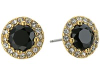 Lauren Ralph Lauren Treasure Trove Small Stone Stud Earrings Black Crystal Gold Earring