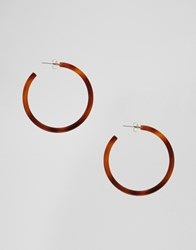Ny Lon Nylon Resin Hoop Earrings Brown