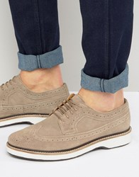 Asos Brogues Shoes In Stone Suede With White Heavy Sole Stone
