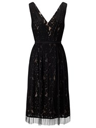 Adrianna Papell Lace Overlay Fit And Flare Prom Dress Black Pale Pink