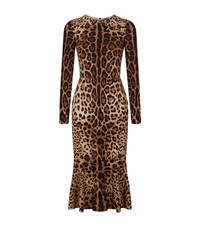Dolce And Gabbana Leopard Print Dress Female Brown