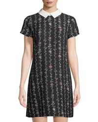 Cynthia Steffe Collared Floral Dress Black