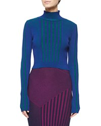 Ohne Titel Long Sleeve Ribbed Turtleneck Sweater Sapphire Emerald
