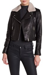 Doma Grain Genuine Dyed Shearling Crop Nappa Jacket Black