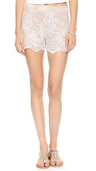 Alice Olivia High Waisted Lace Short Cream Nude