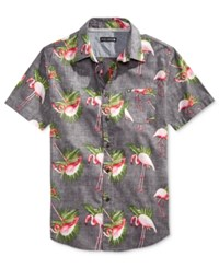 Ocean Current Men's Flamingo Print Short Sleeve Shirt