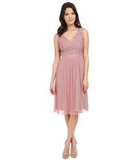 Adrianna Papell Fit And Flare Lace Combo Dress Ashrose Tan Women's Dress Pink