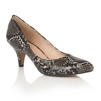 Lotus Bakula Animal Print Courts Black