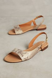 Anthropologie Giovanetti Slingback Sandals Pink
