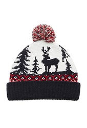 Forever 21 Reindeer Graphic Pom Beanie Navy Red
