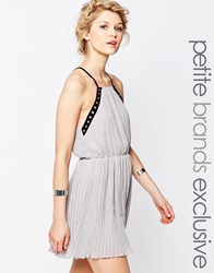 True Decadence Petite Eyelet Trim Chiffon Cami Dress Gray