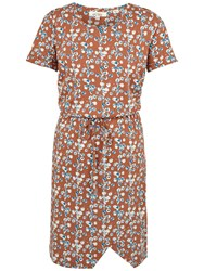 Fat Face Cally Painted Bloom Dress Ginger