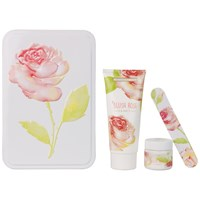 Heathcote And Ivory Blush Rose Manicure Collection In A Tin