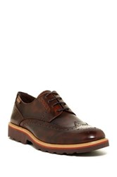 Pikolinos Leather Wingtip Oxford Brown