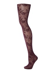 Charnos Floral Opaque Tights Plum
