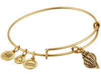 Alex And Ani Conch Shell Charm Bangle Rafaelian Gold Finish Bracelet