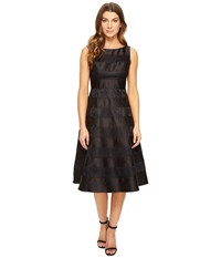 Adrianna Papell Striped Lace Mikado Combo Fit And Flare Dress Black Nude Women's Dress