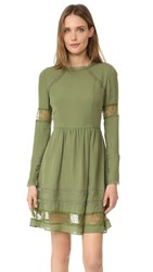 Alice Olivia Janae Dress Sage