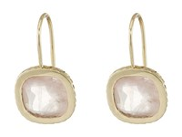 Cole Haan Cushion Cut Semi Precious Drop Earrings Gold Rose Quartz Earring