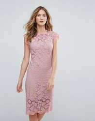 Traffic People High Neck Contrast Lace Overlay Pencil Dress Purple