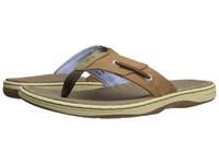 Sperry Baitfish Thong Sonora Sandals Blue