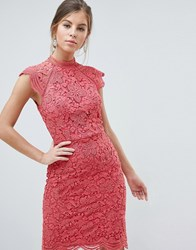 Chi Chi London Scallop Lace Pencil Dress Pink