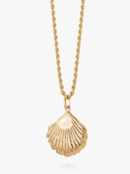 Daisy London Isla Large Shell Pendant Necklace Gold