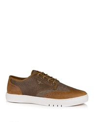 Creative Recreation Defeo Q Brown Reptile Vintage Oxford Sneakers