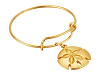 Alex And Ani Wire Ring Sand Dollar Gold Ring