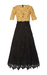 Costarellos Guipure Lace Bi Color Tea Length Dress Black