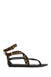 Liliana Jaclyn Flat Sandal Brown