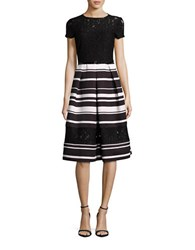 Ellen Tracy Short Sleeve Striped And Lace Fit And Flare Dress