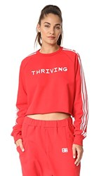 Baja East Thriving Terry Crop Sweatshirt Red