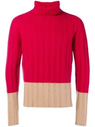 Massimo Piombo Mp Roll Neck Sweater Red