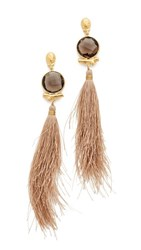 Gas Bijoux Serti Bella Pompon Earrings Brown