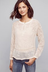 Anthropologie Estella Lace Top Ivory