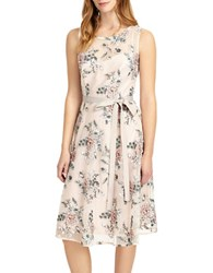 Phase Eight Prudence Embroidered Dress Cameo