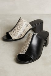 Anthropologie Freda Salvador Yin Mule Sandals Black Motif