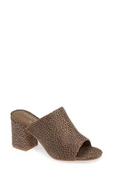Coconuts By Matisse Higher Ground Slide Sandal Taupe