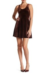 Painted Threads Velvet Sleeveless Dress Brown